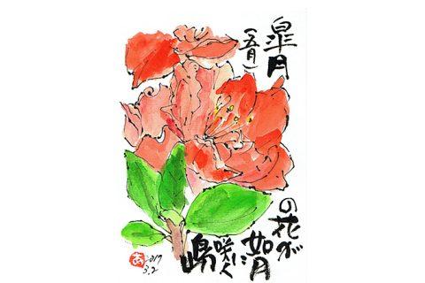 皐月(五月)の花が如月に咲く島—アキラさんの絵手紙2017