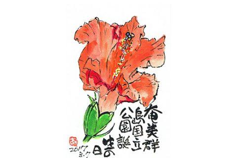 奄美群島国立公園誕生の日=2017年3月7日–アキラさんの絵手紙2017