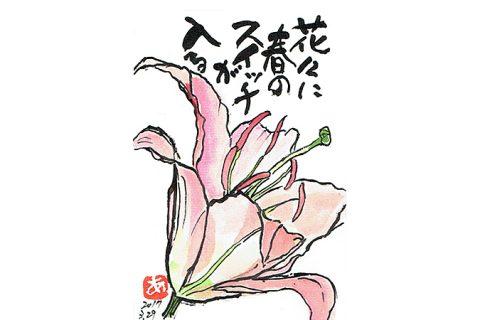 花々に春のスイッチが入る–アキラさんの絵手紙2017