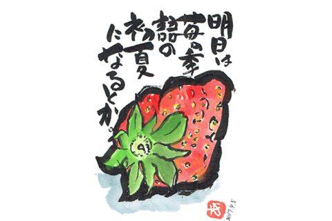 明日は苺の季語の初夏になるとか。–アキラさんの絵手紙2017