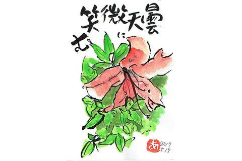 曇天に微笑む—アキラさんの絵手紙2017