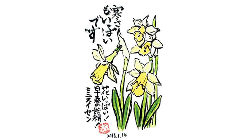 絵手紙--ミニ水仙