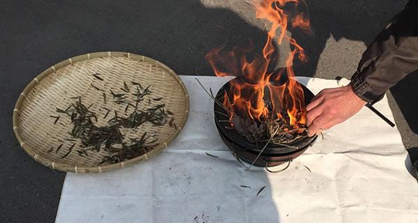 カトリック教会の典礼【灰の水曜日】に使う灰の作り方