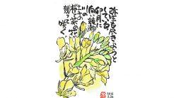 絵手紙--菜の花
