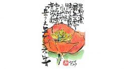 絵手紙--ポピー(ひなげしの花)