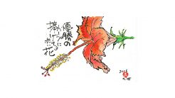 絵手紙--赤い花(ハイビスカス)