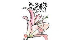 絵手紙-ゆり