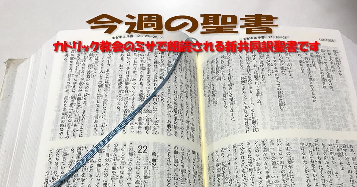 日曜日の聖書