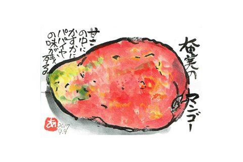 奄美のマンゴー—–アキラさんの絵手紙2017
