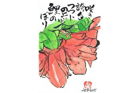 咲き誇るつつじの上には鯉のぼり—アキラさんの絵手紙2018